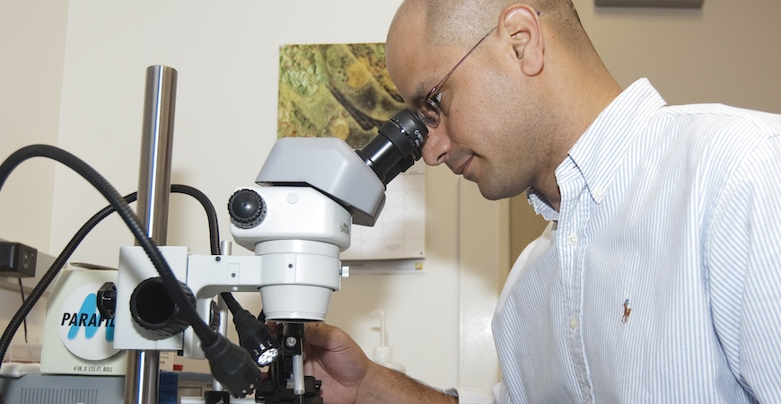 A man in a white shirt is seen in profile looking through the eyepiece of a microscope.